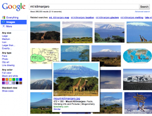 Mount Kilimanjaro search results