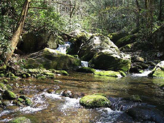 image of stream density